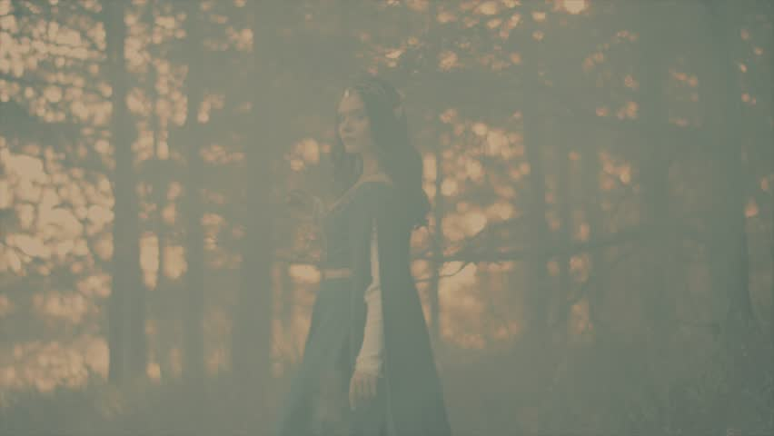 a mystical woman with curly hair, like a fairy-tale elf with sharp and long ears strolling through the forest, a lady walking past the trees, around there is a fog that creates a mysterious atmosphere
