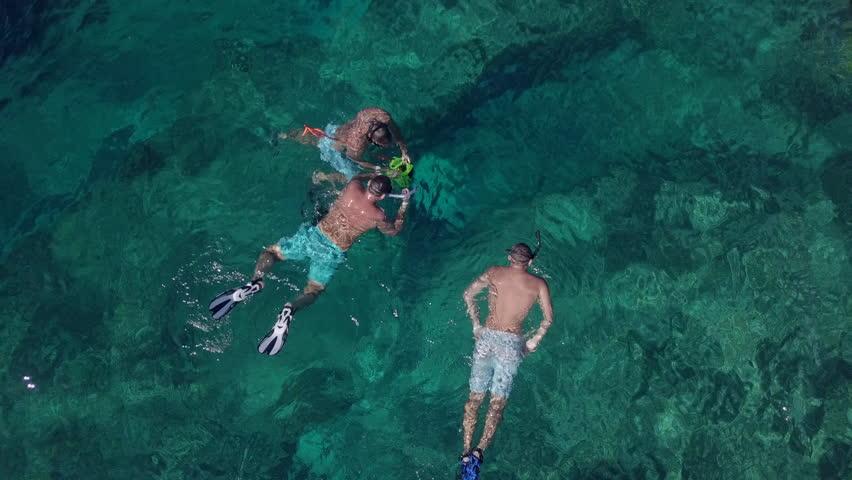 3 guys snorkeling in Bahamas // Drone top down   Shutterstock HD Video #1013709854
