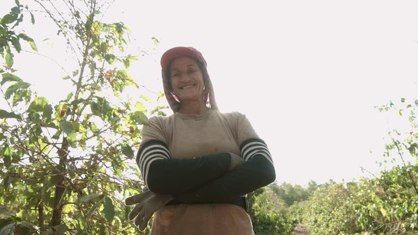Coffee farmer woman smiling to camera. Red ripen arabica coffee at coffee plantation