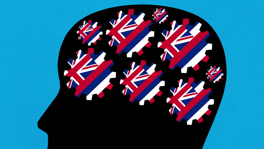Turning Hawaii US state flag gears in human head profile zooming out