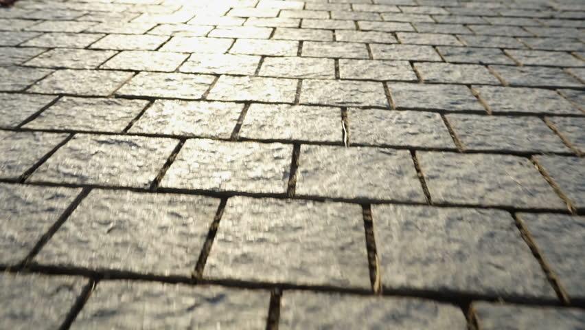 Pavement made of stone. Beautiful garden walkway