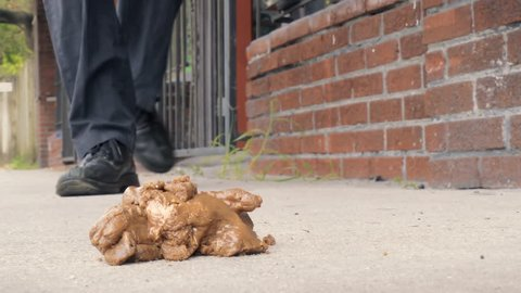 Feet stepping in dog poop on city sidewalk