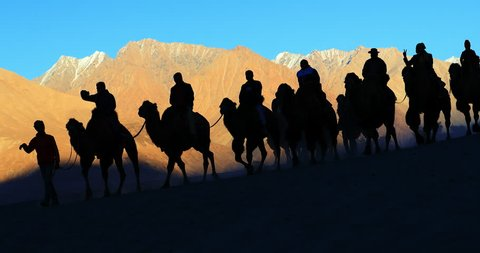 Sunset silhouette of tourists riding camels in Ladakh. Tourism in Himalaya region of northern India