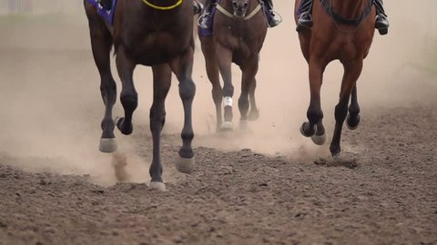Horse Racing. The Feet of the Horses at the Racetrack Raising Dust and Dirt. Close Up. Slow motion.