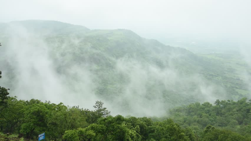 Aerial top view of Fog covers forest, View from above | Shutterstock HD Video #1014260564