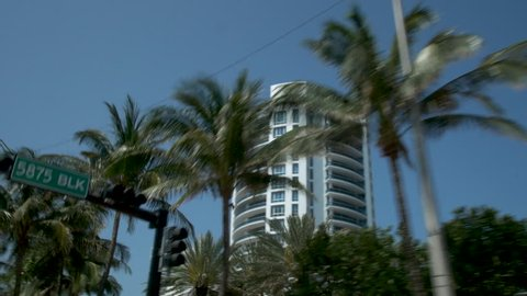 Miami Contemporary Condos Through Palm Trees from Ground Level