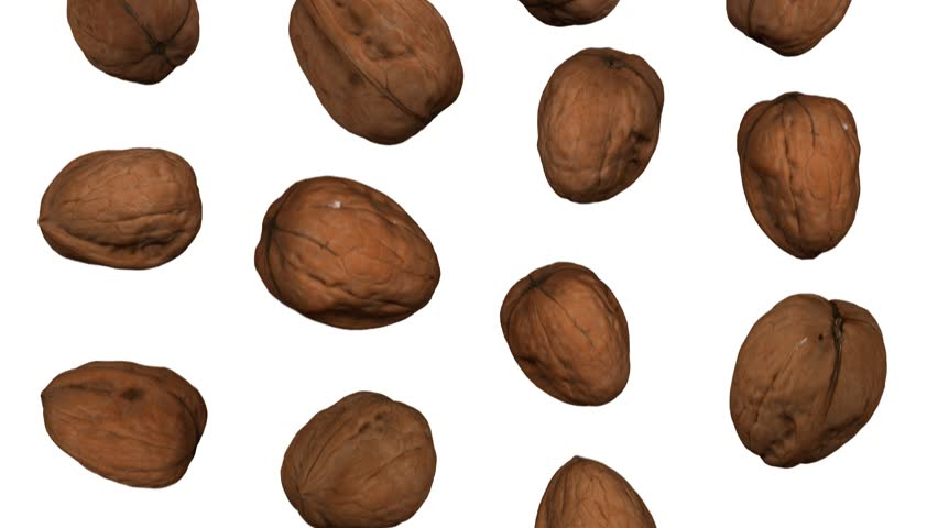 Realistic render of falling walnuts on white background. The video is seamlessly looping, and the 3D objects are scanned from real walnuts.