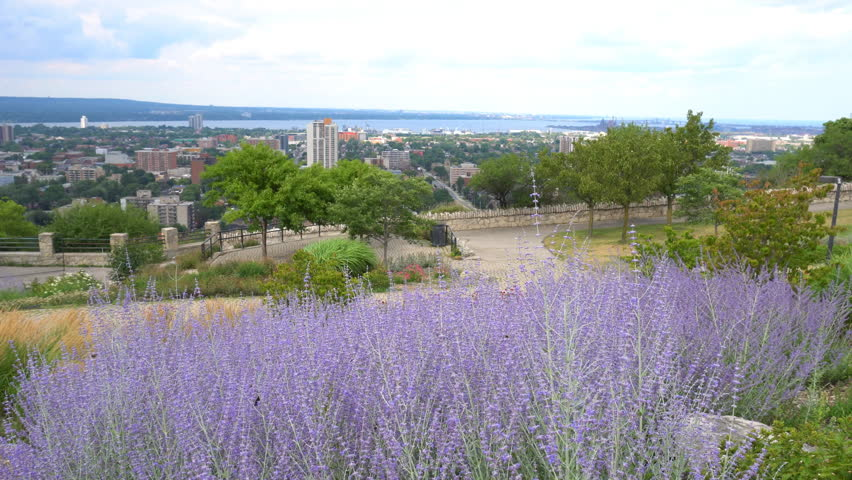 Hamilton city landmarks and waterfront skyline view from Sam Lawrence Park with landscaped flowerbeds on top of Niagara Escarpment along Bruce Trail in summer