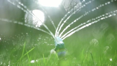 lawn sprinkler. grass irrigation