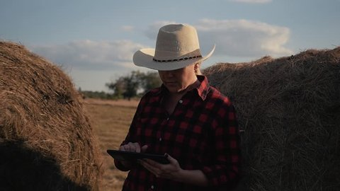 A woman is a farmer with a tablet at a haystack. Farming. Preparation of fodder for winter