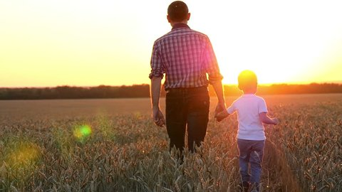 Happy father leads his little son on a wheat field to meet the sunset.