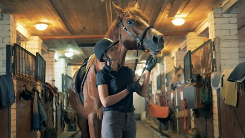 A horsewoman stands with her horse in a stable.
