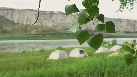 Slow motion - cottonwood leaves blowing in breeze with tents in background by river