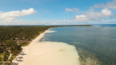 Aerial footage sand beach and palm trees on tropical island with turquoise sea. tropical seascape Siargao, Philippines Tropical landscape ocean, sky, sea