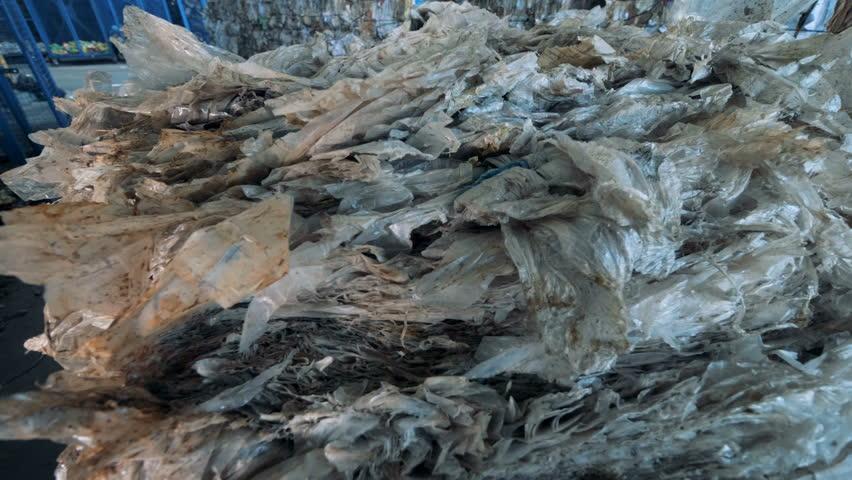 Pile of cellulose, close up.