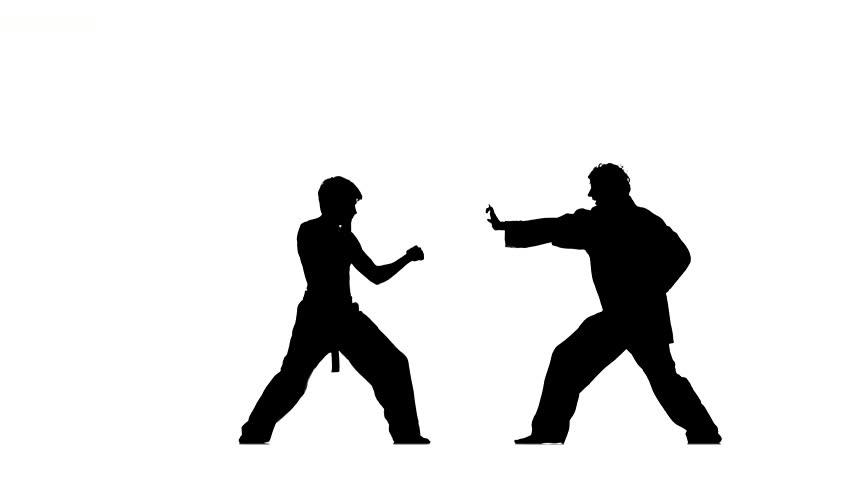 sparrynh taekwondo, martial arts on a white background, black and white kimono kimono, naked torso, blows from each other, Silhouette