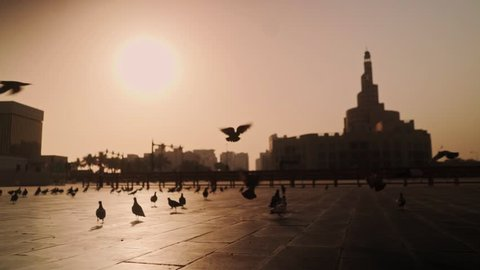 Early morning walk through pigeons flying off the ground in Souq Wakif, Doha, Qatar.