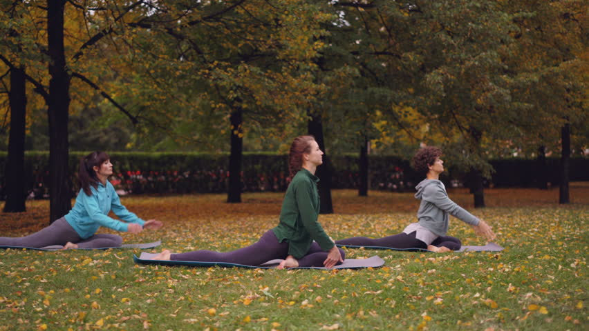 Group of young ladies is doing yoga practising King Pigeon pose Eka Pada Rajakapotasana on mats on beautiful green and yellow lawn in park on autumn day.   Shutterstock HD Video #1016997064