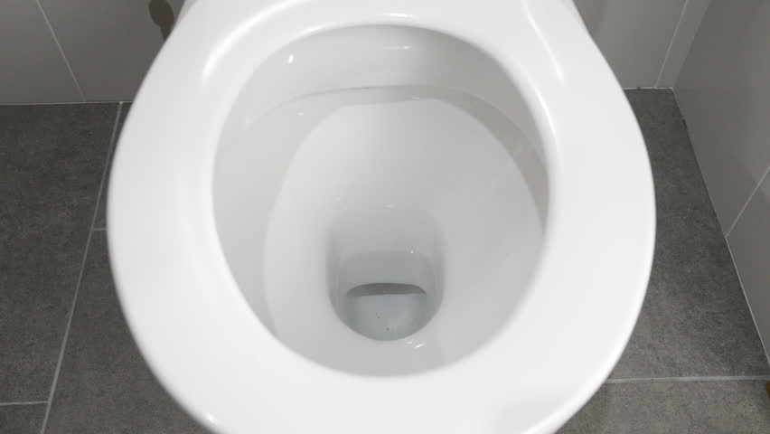 Water empties from a clean white toilet with complete flushing sequence | Shutterstock HD Video #1017517174