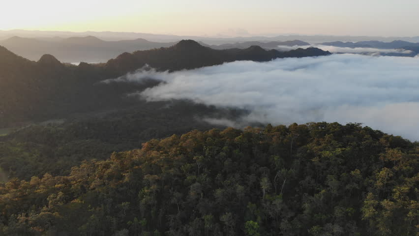 Landscape of Morning Mist with Mountain Layer at  north of Thailand. Aerial View. Flying over the high mountains in beautiful clouds . Aerial video shot.   Shutterstock HD Video #1017828664