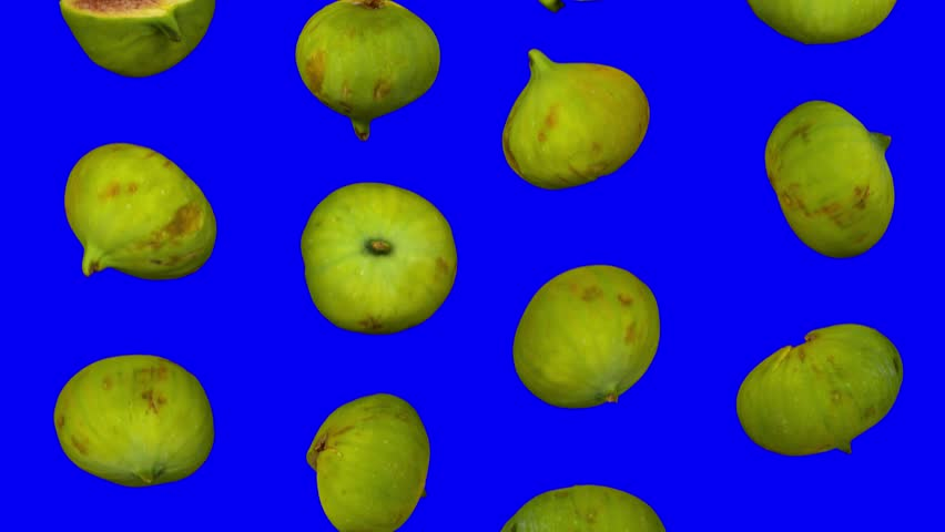 Realistic render of falling green calimyrna figs on blue background. The video is seamlessly looping, and the 3D objects are scanned from real figs.  | Shutterstock HD Video #1017949144