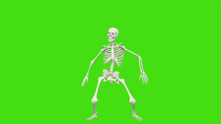 Skeleton dancing. Seamless loop animation on green screen. | Shutterstock HD Video #1018230094