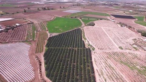 Fields in Izrael valley