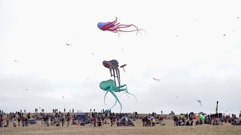 Berkeley, California / United States - 07 29 2018: BERKELEY, CALIFORNIA - JULY 29, 2018: Giant octopus kites hover in the wind above a large crowd at the annual summer Berkeley Kite Festival