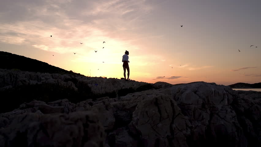 Girl walking on remote beach with rocks and many seagulls above ocean during sunset in slow motion #1019074384