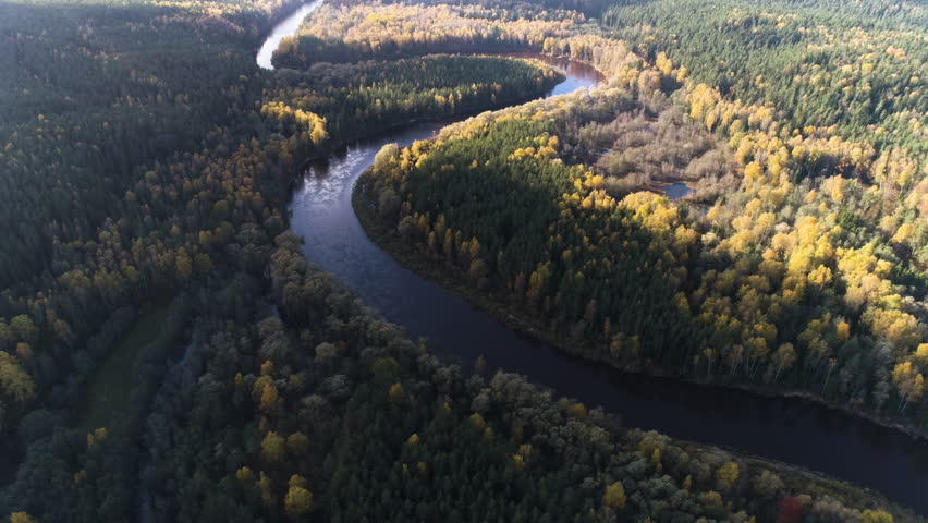 Aerial drone shot of forests and river valley in autumn in Gauja National Park, Latvia | Shutterstock HD Video #1019207074