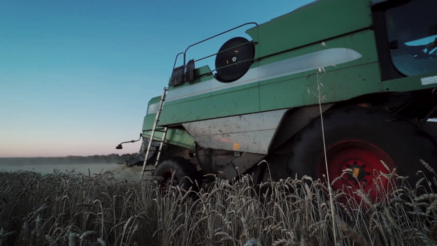 Modern combine harvesting wheat on the field in evening | Shutterstock HD Video #1019259724