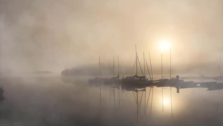Sun burns through early morning fog in tranquil still harbor of docked sailboats #1020315334