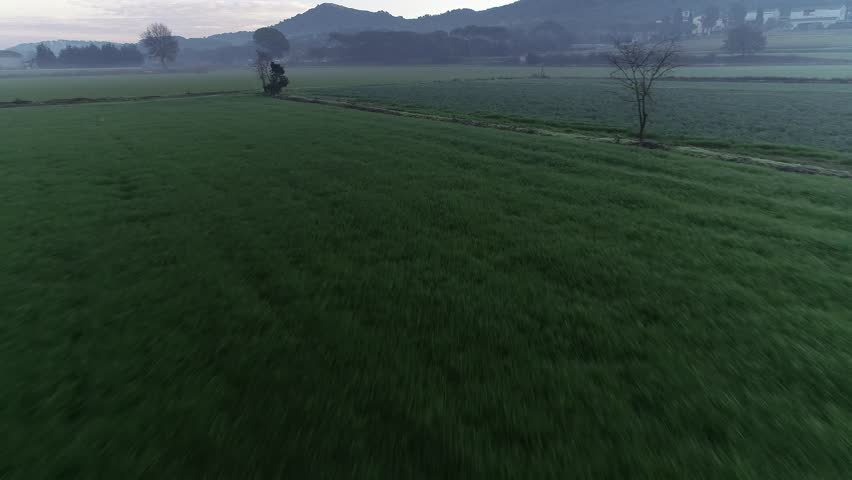 4K drone footage of flight over green fields in the morning in Catalonia