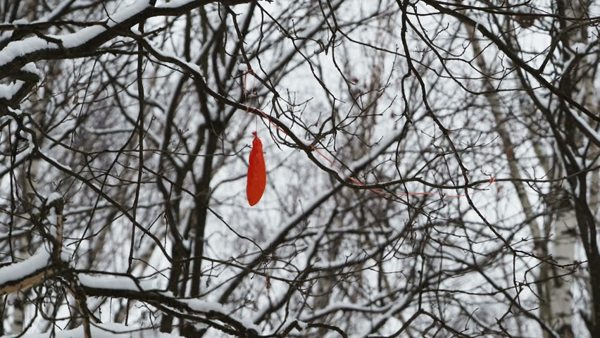 Bursted red air balloon stuck in tree branches. Tree covered with snow. Symbol of hopelessness. | Shutterstock HD Video #1020631474