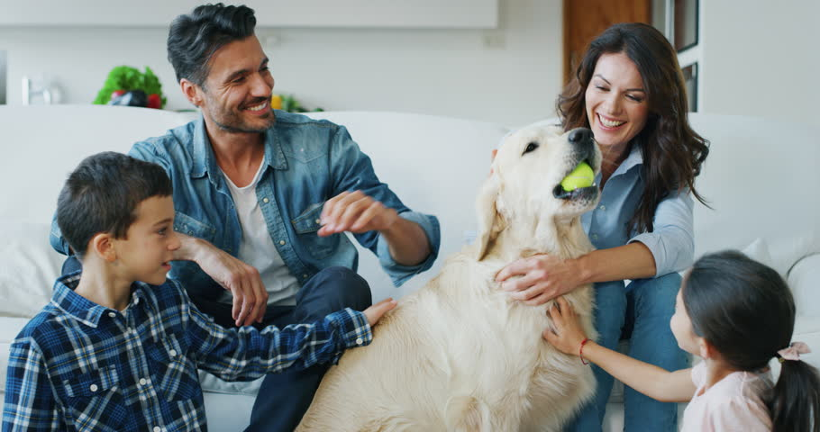Portrait of happy family cuddling their dog having fun together in living room in slow motion. Shot with RED camera in 8K. Concept of happy family, parenthood, love for animals | Shutterstock HD Video #1020812044