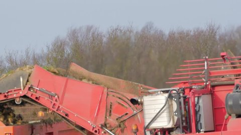 Farming, England - December 2018. Sugar Beet Harvesting, Suffolk, England United Kingdom