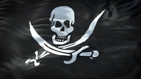 Realistic Flag of Pirates Loop