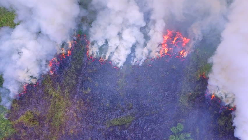 Aerial view smoke of wildfire  | Shutterstock HD Video #1022461654