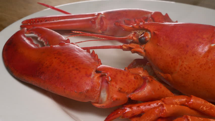 Hot smoking Boiled Lobster  | Shutterstock HD Video #1022715904