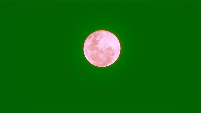 Free Green Screen Blood Stock Video Footage - (2,587 Free Downloads)
