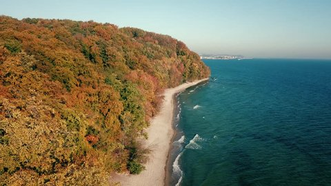 Aerial view of forest near the Baltic sea in Gdynia, Poland