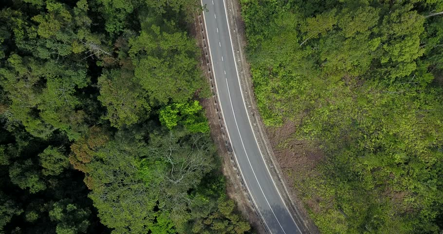 aerial view of little traffic road among green forrest #1022869774