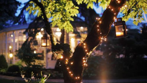 Wonderful B-roll or Background Video of a Decorated Tree with Garland and Lanterns in Night in the Garden of a Luxury Restaurant