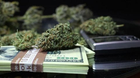 This stock video features a close-up shot of a stockpile of dry marijuana buds and dollar bills strewn on the table. The shot pans horizontally to reveal more buds and money.
