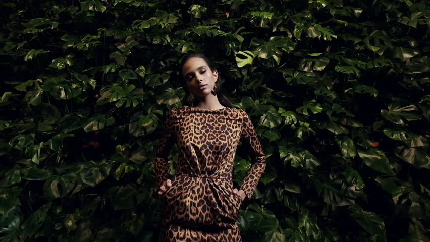 45dc98ea1b424 ... Portrait Of An Elegant Young Woman. Leopard Dress. Slow Motion.