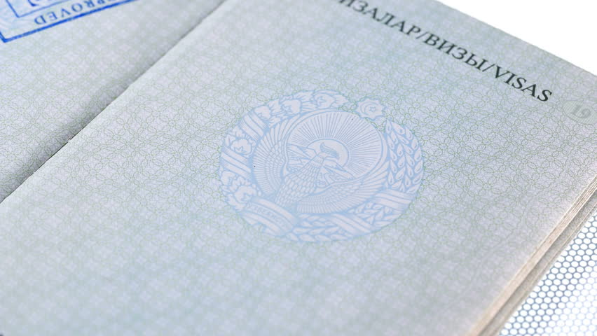 Put a stamp in the passport: Europe visa, approved. passport printing | Shutterstock HD Video #1024502894