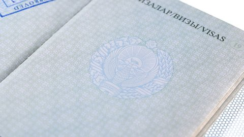 put a stamp in the passport: Europe visa, approved. passport printing