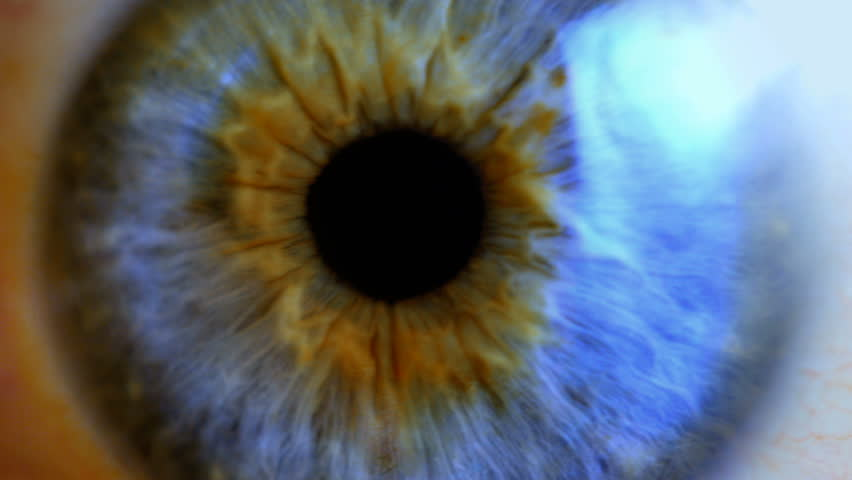 Close up of human eye with brown iris changing size of the