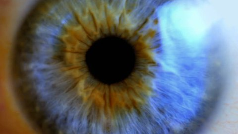 Human eye iris contracting. Extreme close up.