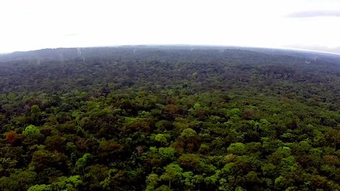 Shooting from the air over the tropics. Equatorial Guinea. Fog over the tropical jungles of Africa.  / Rain-forest Africa. The view from the helicopter. Flying over the jungle